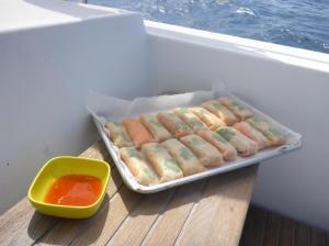 Vietnamese sring rolls